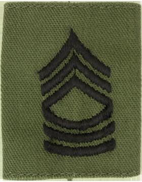 Gortex Loop OD Master Sergeant (AR-GL108)