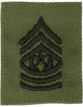 Gortex Loop OD Cmd Sgt Major (AR-GL111)