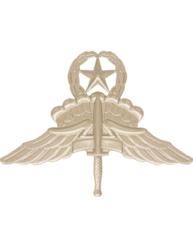 NS-336, No-Shine Master Halo Badge