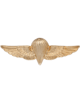 NY-313 Navy/United States Marine Corps Parachutist