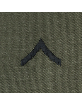 Subdued Sew-on Rank S-101 Private (E-2)