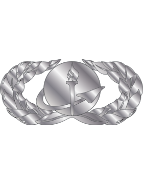 Air Force Badge No Shine Mid-Size Force Support