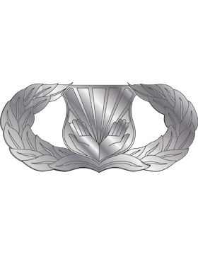Air Force Badge No Shine Full Size Chaplain Assistant