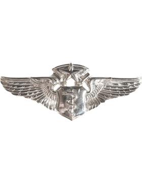 USAF Badge No Shine Chief Flight Nurse