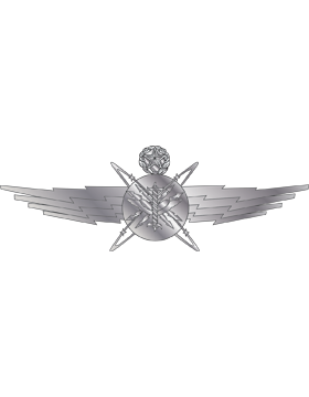 Air Force Badge No Shine Full Size Officer Cyberspace Operator