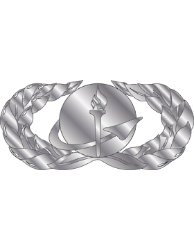 Air Force Badge No Shine Full Size Force Support