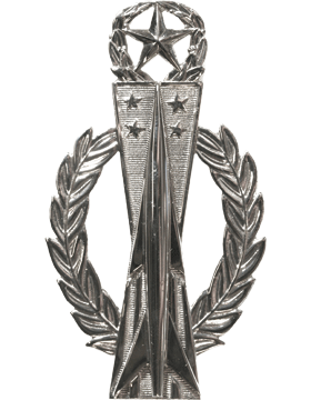 USAF Badge No Shine Master Missile Operator
