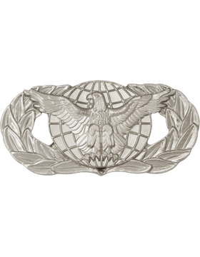 Air Force Badge No Shine Mid-Size Force Protection