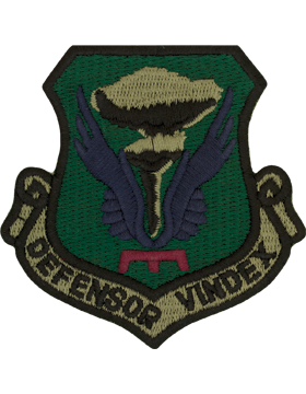 509th Bomb Wing Subdued Patch (Defensor Vindex)