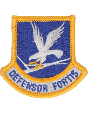 Air Force Enlisted Security Forces Beret Flash