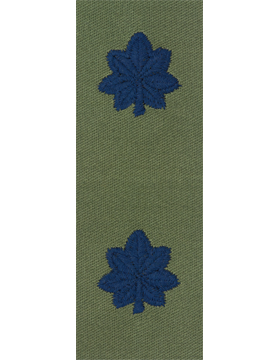 Air Force Subdued Sew-on Rank Lieutenant Colonel
