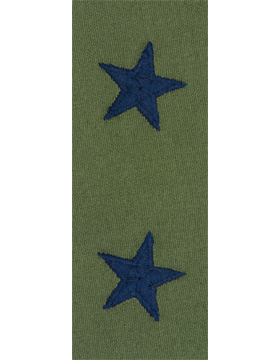 Brigadier General USAF Sew-On Subdued