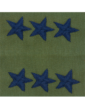 Air Force Subdued Sew-on Rank Lieutenant General (Point to Center)