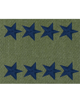 General (Point to Center) USAF Sew-On Subdued