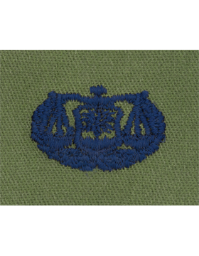 Air Force Subdued Sew-on Badge Judge Advocate