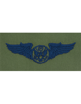 Air Force Subdued Sew-on Badge Enlisted Aircrew Member