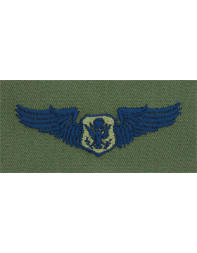 Air Force Subdued Sew-on Badge Non-Rated Officer Aircrew