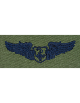 Air Force Subdued Sew-on Badge Flight Nurse