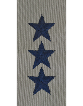 Lieutenant General (Point to Center) USAF Sew-On ABU