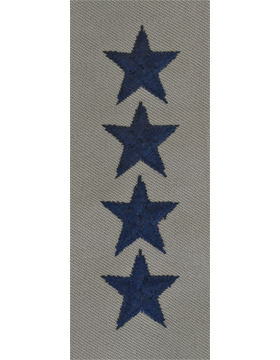 General (Point to Center) USAF Sew-On ABU
