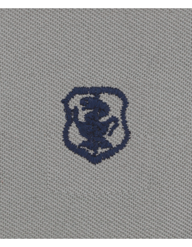Air Force ABU Sew-on Badge Nurse