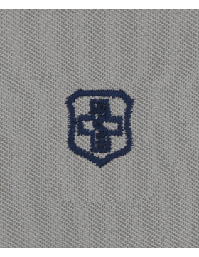Air Force ABU Sew-on Badge Medical Technician