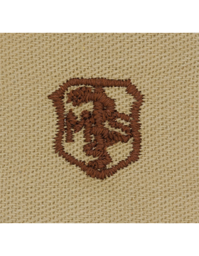 Air Force Desert Sew-on Badge Medical Services