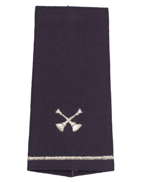 USAF Shoulder Marks Blue with Two Crossed Bugles (Pair)