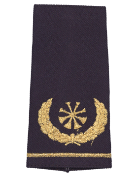USAF Shoulder Marks Blue with Four Bugles (Deputy Chief) (Pair)