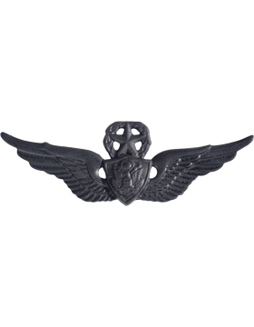 Black Metal Badge Master Aircraft Crewman