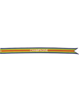 USAF World War I Battle Streamer Champagne