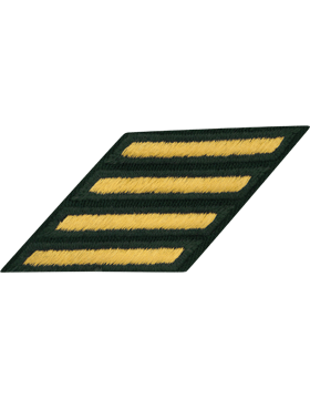 Female Service Stripes Gold/Green C-212