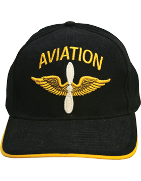 Cap (DC-AR/204) Black with Aviation Branch Of Service (3D)