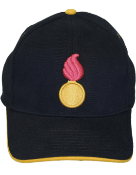 Cap (DC-AR/226) Black with Ordnance Branch Of Service (3D)