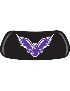 Falcon, Original EyeBlack EB-A1389