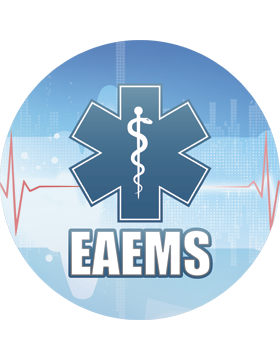 EAEMS Star of Life Magnet 4.5in