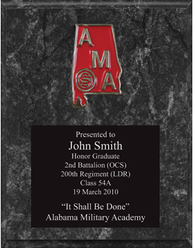 8x10 Marble Plaque with AMA Medallion