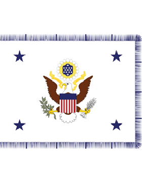 Positional Flag Air Force Chief Staff Rayon 4 ft 4 in x 5 ft 6 in