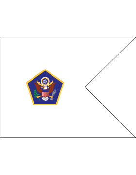 Army Guidon 6-01 Headquarters US Army