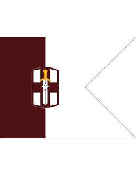 Army Guidon 6-11H Seperate Brigade Medical Specify Brigade