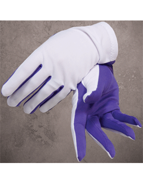 Flash Gloves (G-302B) Purple and White