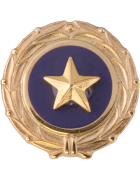 Gold Star, Act of Congress Lapel Pin