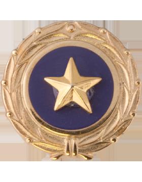 Gold Star, Act of Congress Lapel Pin