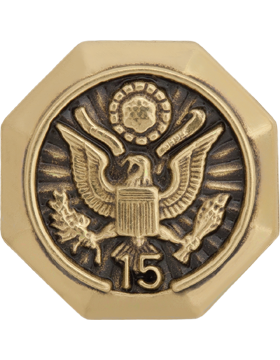 Us military supply room length of service button 15 years lapel pin publicscrutiny Choice Image