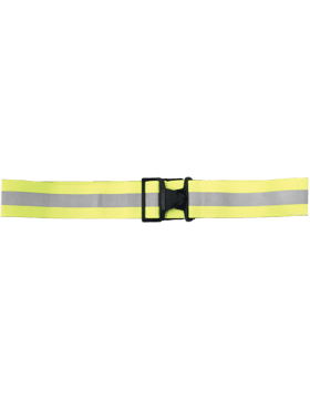 Reflective Belt with Buckle and Gray Stripe LR027978