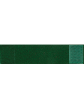 Green Leadership Tab with Fastener