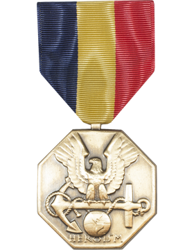 Navy & Marine Corps Full Size Medal (Pin Back)