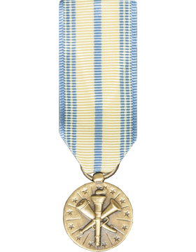 Armed Forces Reserve (Air Force)