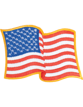 Waving American Flag Large Gold Border Full Color