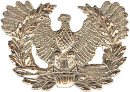 No-Shine Warrant Officer Cap Device